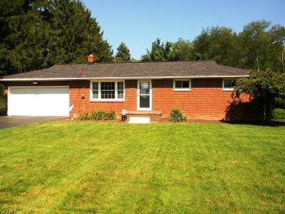 Canton Single Family Home For Sale: 6644 Birch Avenue