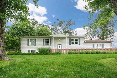 Columbiana County Single Family Home For Sale: 2547 Georgetown Damascus Road