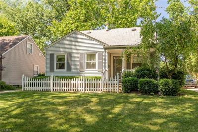 Elyria Single Family Home For Sale: 536 Princeton Avenue