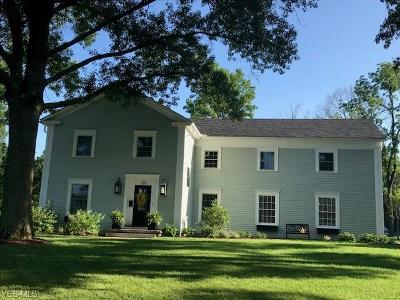 Hudson Single Family Home For Sale: 139 Old Orchard Drive