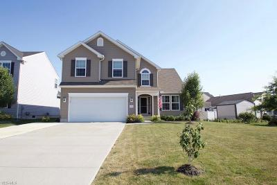 Lorain County Single Family Home For Sale: 3991 Woodworth Drive