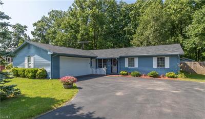 Girard Single Family Home For Sale: 990 Chrysann Drive