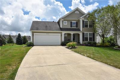 Lorain County Single Family Home Active Under Contract: 37079 Chaddwyck Lane