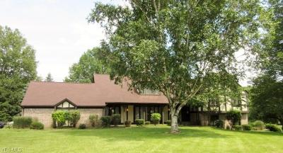 Canton Single Family Home For Sale: 1710 Turnberry Circle