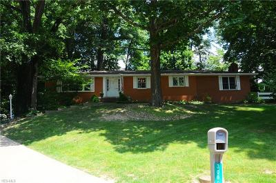 Zanesville Single Family Home For Sale: 3080 Sebaugh Drive