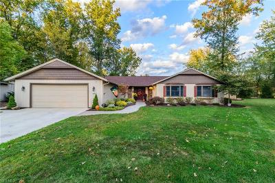 Strongsville Single Family Home For Sale: 10807 Watercress Road