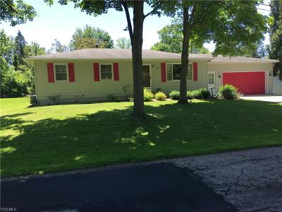 Medina County Single Family Home For Sale: 290 Briarwood Boulevard
