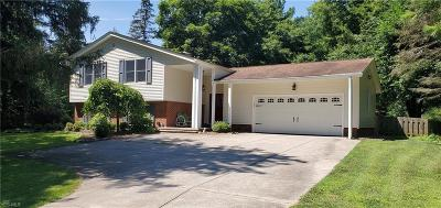 Brecksville Single Family Home For Sale: 8524 Riverview Road