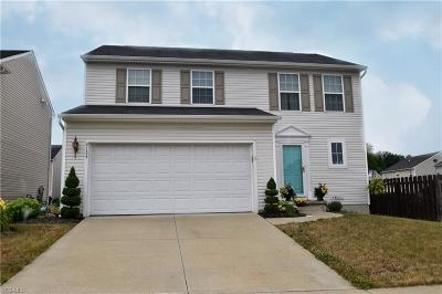 Lorain County Single Family Home For Sale: 6134 Goldenrod Lane
