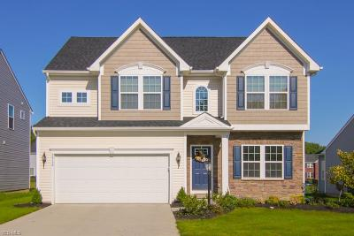 North Ridgeville Single Family Home For Sale: 36158 Waterscape