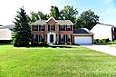 Lorain County Single Family Home For Sale: 31518 Winners Circle