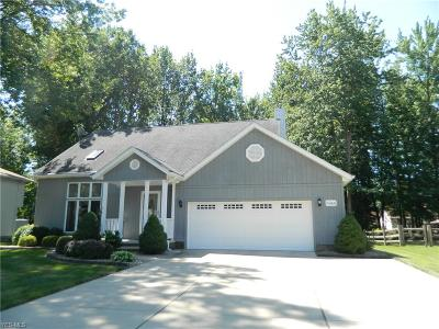 Mentor Single Family Home For Sale: 6944 Weatherby Drive
