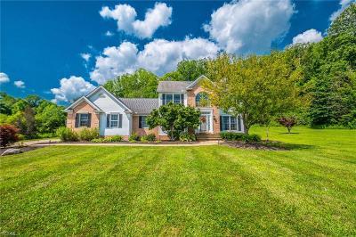 Concord Single Family Home For Sale: 11120 Bain Farm Court