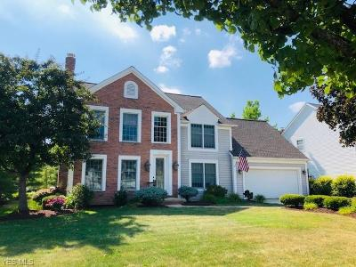 Strongsville OH Single Family Home For Sale: $314,900