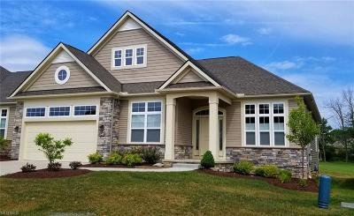 Broadview Heights Single Family Home For Sale: 547 Fairway Lane