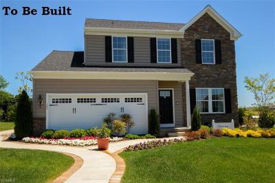 Lorain County Single Family Home For Sale: 5517 Schueller Boulevard