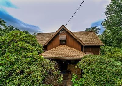 Kent Single Family Home For Sale: 704 Vine Street