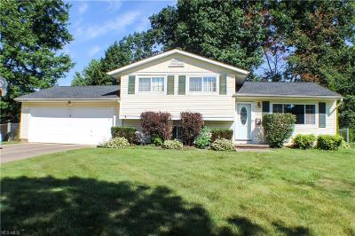 Twinsburg Single Family Home For Sale: 9400 Lawnfield Drive