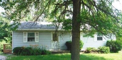 Twinsburg Single Family Home For Sale: 2025 Case Street