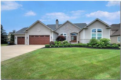 Single Family Home For Sale: 4105 Symphony Lane