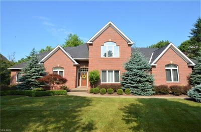 Brecksville Single Family Home For Sale: 4555 Hunting Valley Lane