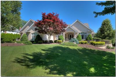 Independence Single Family Home Active Under Contract: 7273 Forestwood