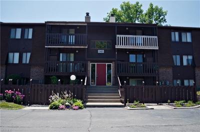 Lorain County Condo/Townhouse For Sale: 4615 Oakhill Boulevard #203