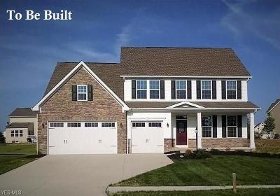 Lorain County Single Family Home For Sale: 5475 Schueller Boulevard