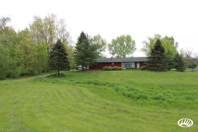 Medina County Single Family Home For Sale: 9752 Chatham Road