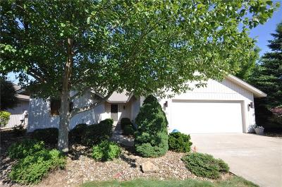 Lorain County Single Family Home For Sale: 33140 Tanager Court