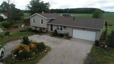 Lorain County Single Family Home For Sale: 18709 Gifford Road