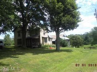 Stark County Single Family Home For Sale: 8000 Briggle