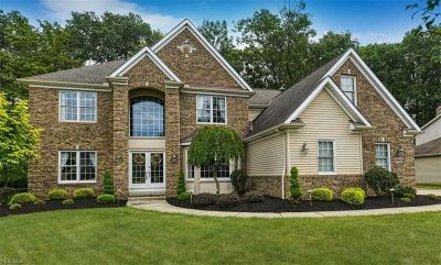 Broadview Heights Single Family Home For Sale: 8683 Camden Court