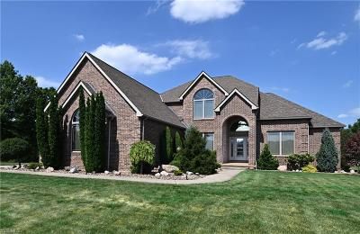 Lorain County Single Family Home For Sale: 41147 Mills Circle