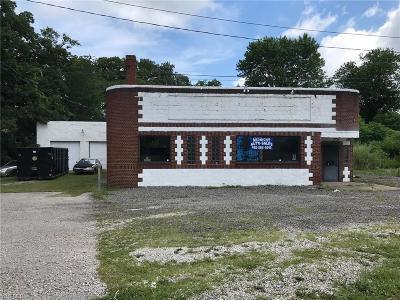 Conneaut Commercial For Sale: 200 E Main Usr 20 Road