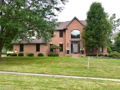 Canfield Single Family Home For Sale: 110 Queens Lane