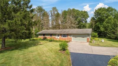 Single Family Home For Sale: 18369 Quinn Road