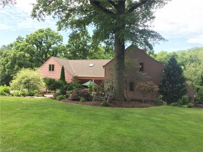 Hudson Single Family Home For Sale: 5468 Stow Road