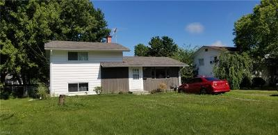 Lorain County Single Family Home For Sale: 803 West Drive