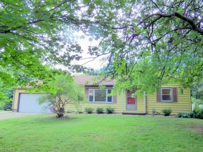 Medina County Single Family Home For Sale: 5917 Ryan Road
