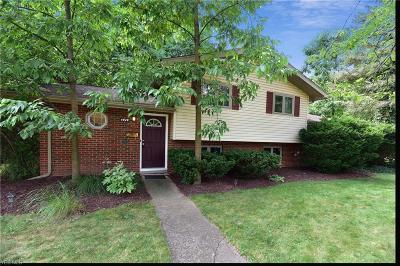 North Olmsted Single Family Home For Sale: 4920 Devon Drive