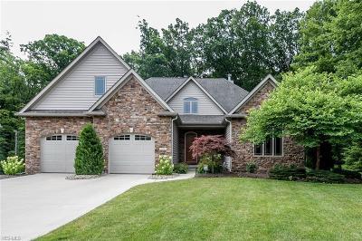 Lorain County Single Family Home For Sale: 353 Copper Creek Drive