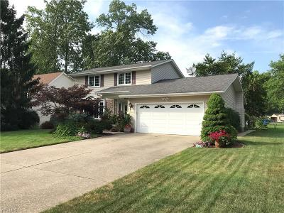 Lorain County Single Family Home For Sale: 658 Appleseed Drive
