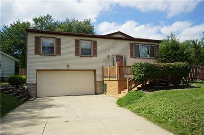 Canfield Single Family Home For Sale: 4604 Warwick Drive