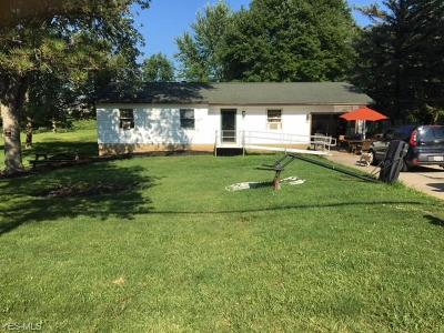 Chippewa Lake Single Family Home Active Under Contract: 7855 Lake Road