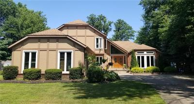 Westlake Single Family Home For Sale: 25624 Woodpath Trail