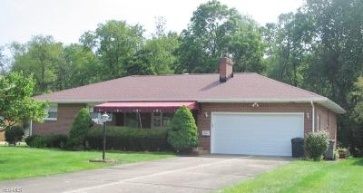 Youngstown Single Family Home For Sale: 1503 Brantford Drive