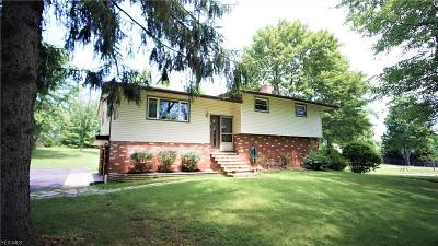 Hinckley Single Family Home For Sale: 1485 Bellus Road