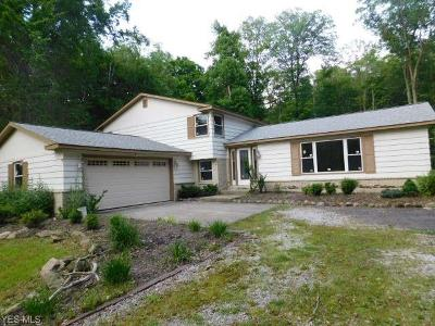 Chagrin Falls Single Family Home For Sale: 104 Maple Hill Drive