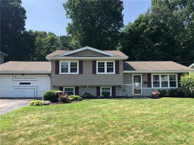 Boardman Single Family Home Active Under Contract: 4107 Baymar Drive